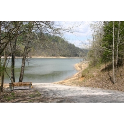Lakeview Mountain Estates year round boat launch ramp